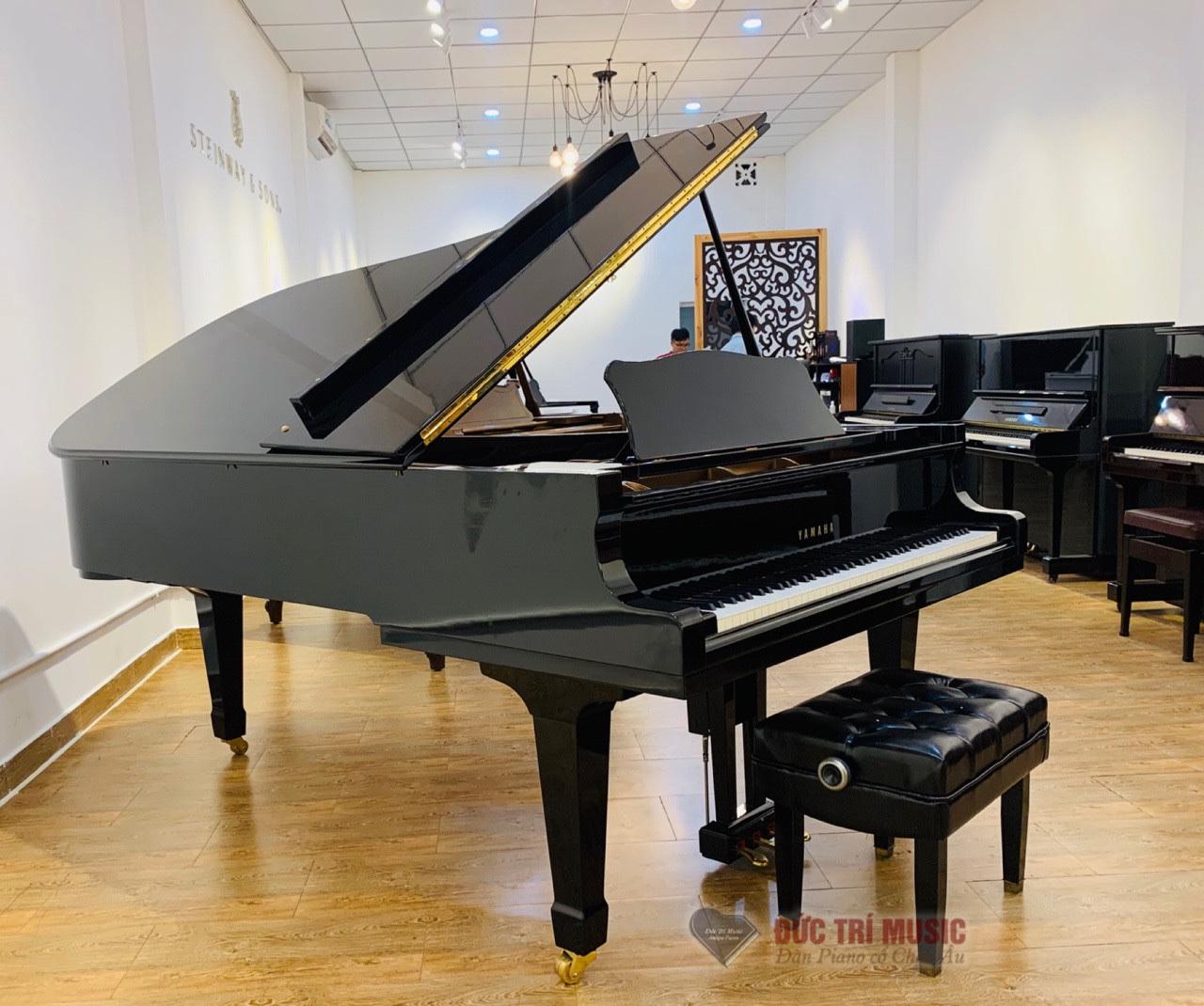 ĐÀN PIANO ĐỨC TRÍ DÙNG SƠN WASHIN